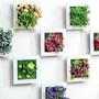 [現貨]仿真花草多肉植物人造草盆栽立體相框牆飾 掛飾 壁飾 壁掛 壁貼『不挑款』【JT1320】《Jami Honey》