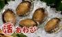 【台北濱江】空運直送~Q彈鮮甜~南非活鮑魚1kg(約11-13顆)