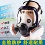 防毒面具全面罩噴漆化工氣體農藥全臉防護自吸過濾防塵防毒面罩 臺北日光