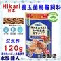 【水族達人】日本Hikari《高夠力 善玉菌烏龜飼料 沉水性 L 120g 20545》屋頂龜 澤龜 日本製造