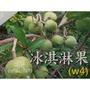 花巷🌸 冰淇淋果-白柿