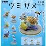 全套6款【日本正版】JOIN系列 海龜觀賞組 扭蛋 轉蛋 場景組 - 371022