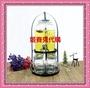 4L架子賣場/不含玻璃瓶】果汁罐架子玻璃瓶泡酒瓶帶水龍頭架子啤酒桶玻璃飲料桶架子玻璃釀酒瓶酵素桶密封罐檸檬瓶果汁罐4