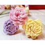 【發現禮物-24小時出貨】日本大地農園-進口不凋花。太陽玫瑰 / 通草花 / 木片花。新娘頭飾捧花DIY。新秘。伴娘