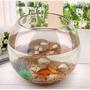 創意圓形玻璃魚缸 微景觀苔蘚生態玻璃瓶 水培、多肉植物花器