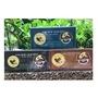 代購現貨[越南咖啡]松鼠咖啡 濾袋 100g _ 黑咖啡 & 純阿拉比卡 &榛果風味
