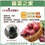 【蔬菜之家】C29.紅皮洋蔥種子(共有2種包裝可選)