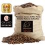巴拿馬 詹森莊園 藝伎 日曬精選【咖啡豆✌買2送1】 OKLAO 歐客佬 咖啡 新鮮烘焙 咖啡豆