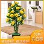 ❤全館下殺滿減❤紅楓樹假樹仿真樹假花盆栽大型仿真綠植室內裝飾擺件仿真向日葵花