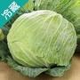 【台灣】脆嫩雪翠高麗菜1.2KG/粒【愛買冷藏】