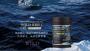 限量出清~~~~僅此一檔~南極冰鑽磷蝦油 (一罐/60顆)2罐