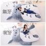 龍貓 沙發 懶人床 睡墊 床墊(送抱枕)