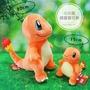 【喵小伊】15cm 30cm 小火龍 精靈寶可夢 神奇寶貝 正版 玩偶 火蜥蜴 Pokemon 娃娃 生日禮物 交換禮物