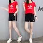 ❾特價 Adidas愛迪達三葉  女款運動短褲+上衣  短棉 褲運動套裝  休閑短褲 純棉套裝1025
