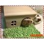 有現貨❤️小寵超愛😍😍無底天然實木木屋窩 天竺鼠刺蝟兔子倉鼠龍貓寵物用品 房子 避冬(150元)
