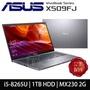 ASUS 華碩 X509FJ-0111G8265U 15吋FHD/i5-8265U/DDR4 4GB/1TB 5400轉/MX 230 2G/Win10筆電(星空灰)