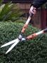 花剪園藝剪刀修枝剪花剪子工具大剪刀果樹枝修剪草坪綠籬園林剪刀
