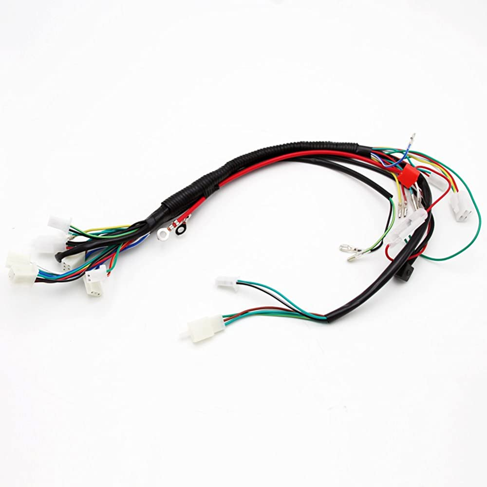 Cc Biggo Wiring Harness Wireloom 50cc 110cc 125cc Atv Quad Bike Electric Start Wire Loom 70cc 90cc Pit Buggy
